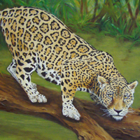 """Kat's Jag II,"" 18x24, is in a private collection."