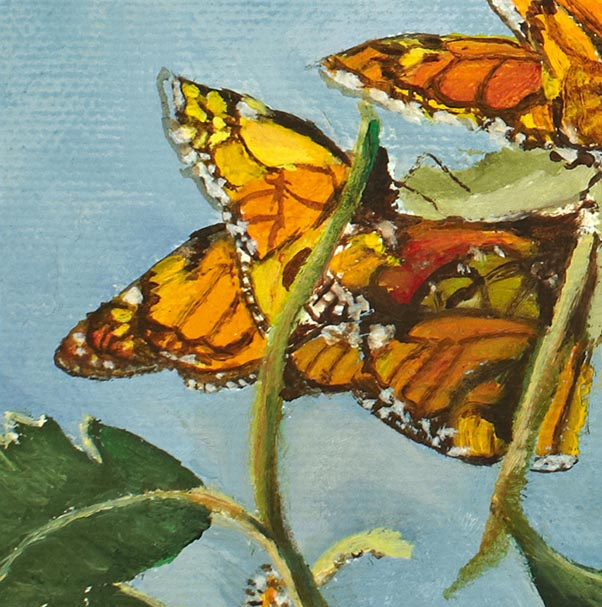 """Monarchs,"" oil/canvas 10x10 gallery wrapped, private collection"