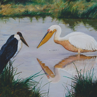 """The Next One's Mine,"" 12x16 (Maribou stork and pelican)"