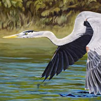 """Skimming,"" 24X36, is in a private collection, Canada.  A few limited edition Giclees are available."