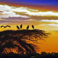 """Amboseli Sunset,"" 18X36, (Marabou stork), wrapped; the Study for ""Amboseli Sunset,"" 14x18, oil on canvas board, is also available."